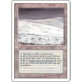 Magic the Gathering 3rd Ed (Revised) Single Tundra - NEAR MINT (NM)