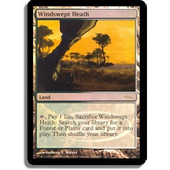 Magic the Gathering Promo Single Windswept Heath Foil (Judge)