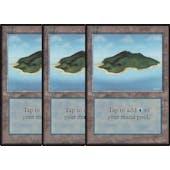 Magic the Gathering Beta 3x LOT Island (Ver 2) - HEAVY PLAY (HP)