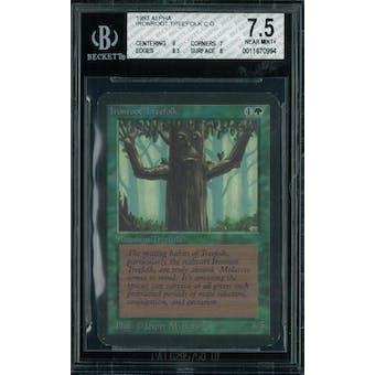 Magic the Gathering Alpha Ironroot Treefolk BGS 7.5 (9, 7, 8.5, 8)