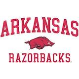 Arkansas Razorbacks Officially Licensed NCAA Apparel Liquidation - 160+ Items, $6,400+ SRP!