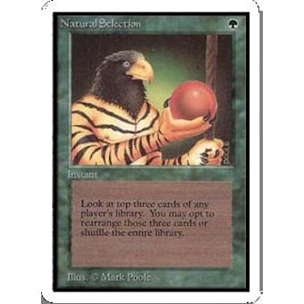 Magic the Gathering Unlimited Single Natural Selection - NEAR MINT (NM)