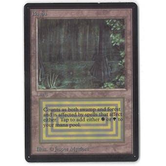 Magic the Gathering Beta Single Bayou - SLIGHT PLAY (SP)
