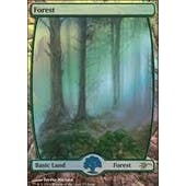 Magic the Gathering Promotional Single Basic Forest FOIL (JUDGE) - SLIGHT PLAY (SP)