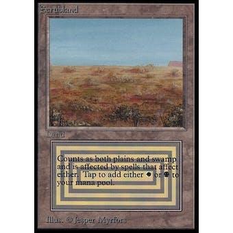 Magic the Gathering Beta International Collector's Edition Single Scrubland (NEAR MINT)