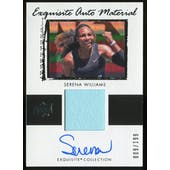 2018 Exquisite Serena Williams Emlpoyee Exclusive Auto Patch #009/199